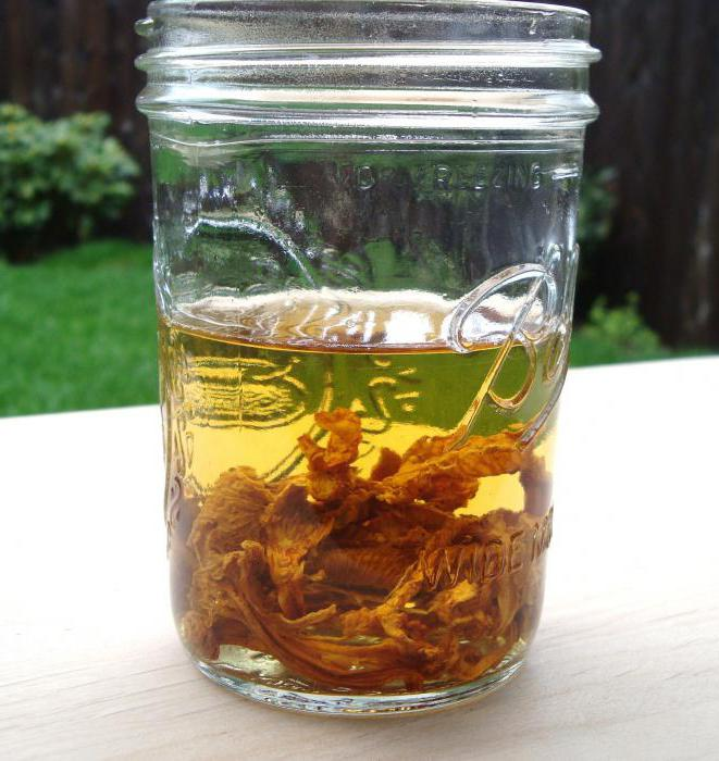 What helps tincture of chanterelles on vodka?